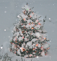 Christmas Tree in the SnowChristmas_2009__200x212
